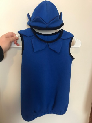 Designed and built a toddler blueberry costume