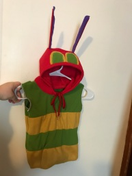Designed and built a hungry caterpillar toddler costume